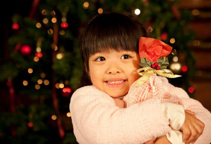 クリスマスプレゼントにおすすめ! 大人も一緒に遊べる知育おもちゃ