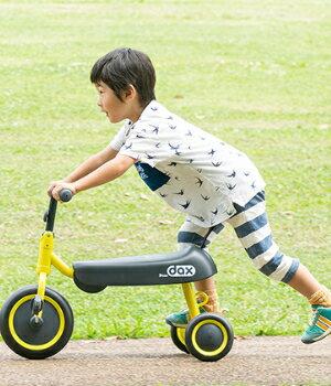 ダックスを公園に持って行って思いっきり親子で外遊びを