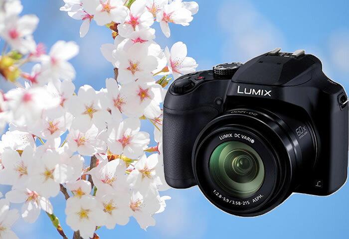 今年の桜をより美しく残そう! 初めての人にオススメなデジタルカメラ&グッズ