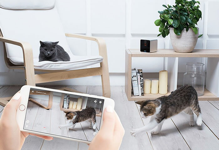 簡単設置で安心・安全! 一家に1台置いておきたい最新「見守りカメラ」