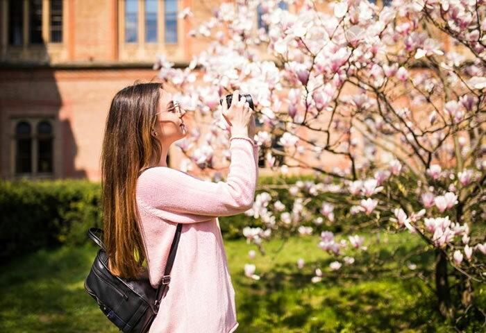 すてきな桜写真を撮るなら一眼カメラ&高級コンパクトで決まり! 開花前にゲットしたい厳選カメラ5モデル
