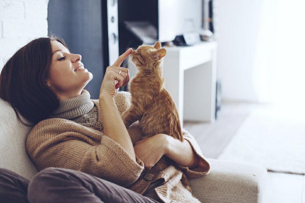 猫の『しっぽ』でわかる本当の気持ち