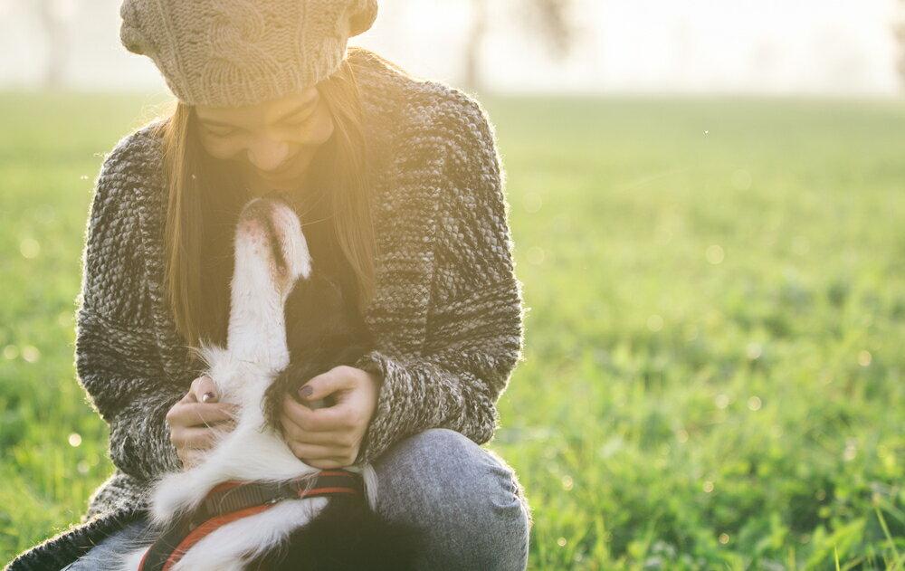 犬の鳴き声の違いによって気持ちの変化を理解する