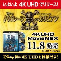大ヒット映画が4K ULTRA HDで予約開始!