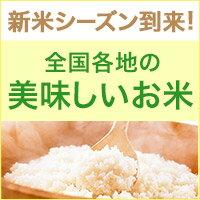 新米シーズン到来!日本各地のおいしいお米