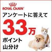 【ロイヤルカナン】ワンニャン祭りキャンペーン!