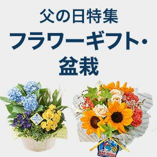 父の日にフラワーギフトや盆栽をプレゼント!