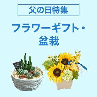 お父さんにフラワーギフトや盆栽をプレゼント!
