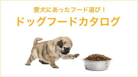 愛犬にあったフードを選びましょう!