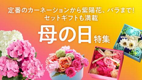 今年の母の日は5月9日(日)!ファッション好きなお母さんにはこちら!