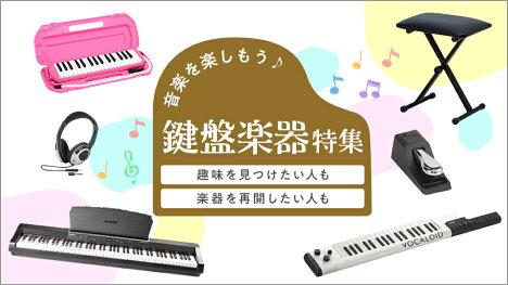 音楽を楽しもう!鍵盤楽器特集