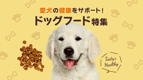 愛犬の健康をサポート!