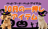 10月のイチオシ商品をご紹介!