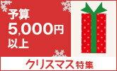 予算5,000円以上のクリスマスプレゼント