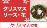 飾るだけでクリスマス気分♪クリスマスリース・花