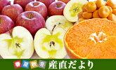 楽天総合ランキング1位の極上果実をご紹介!