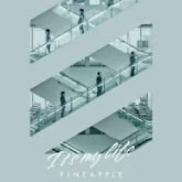 V6 / It's my life / PINEAPPLE(9/23発売)