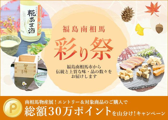 福島南相馬 彩り祭