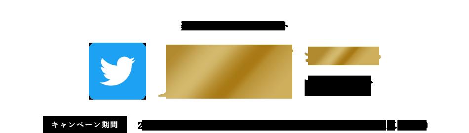 楽天スーパーポイント 10万ポイント山分け キャンペーン期間 2018年11月30日(金)10:00 ~ 2019年1月31日(木)9:59