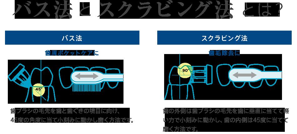 バス法とスクラビング法とは? 【バス法】 歯周ポケットケアに 歯ブラシの毛先を歯と歯ぐきの境目に向け、45度の角度に当て小刻みに動かし磨く方法です。 【スクラビング法】 歯垢除去に 歯の外側は歯ブラシの毛先を歯に垂直に当てて軽い力で小刻みに動かし、歯の内側は45度に当てて磨く方法です。