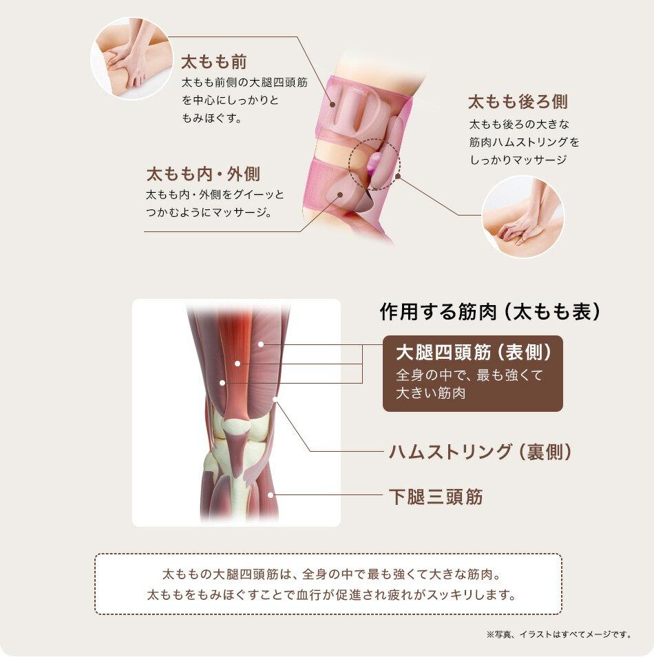 太もも前 太もも前側の大腿四頭筋を中心にしっかりともみほぐす。 太もも後ろ側 太もも後ろの大きな筋肉ハムストリングをしっかりマッサージ 太もも内・外側 太もも内・外側をグイーッとつかむようにマッサージ。 作用する筋肉(太もも表)大腿四頭筋(表側) 全身の中で、最も強くて大きい筋肉 ハムストリング(裏側) 下腿三頭筋 太ももの大腿四頭筋は、全身の中で最も強くて大きな筋肉。太ももをもみほぐすことで血行が促進され疲れがスッキリします。 写真、イラストはすべてイメージです。