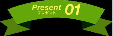 Present プレゼント01