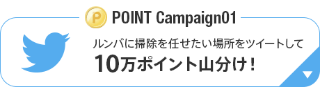 POINT Campaign01