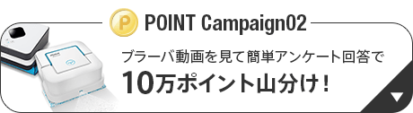POINT Campaign02