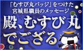宮城県庁ブログ