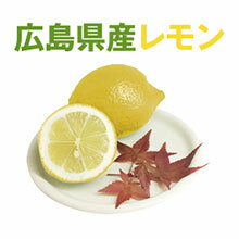 広島県瀬戸田産レモン