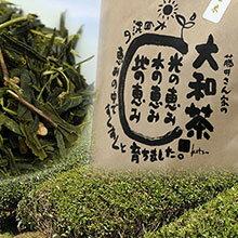 藤井さん家の大和茶