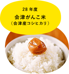 28年度 会津がんこ米(会津産コシヒカリ)