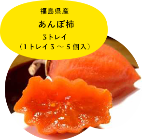 福島県産あんぽ柿 3トレイ (1トレイ3〜5個入)