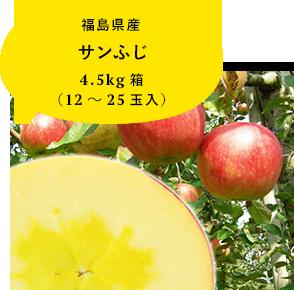 福島県産サンふじ 4.5kg箱 (12〜25玉入)