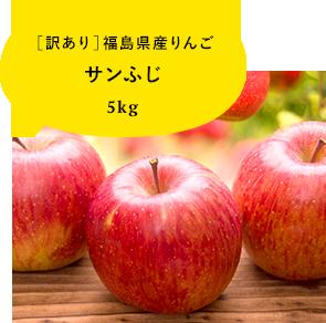 【訳あり】福島県産りんご サンふじ 5kg