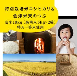 特別栽培米コシヒカリ& 会津米天のつぶ 純精米5kg×2袋 特A一等米使用