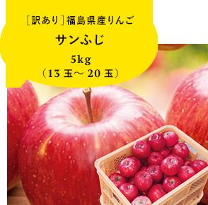 訳あり 福島県産りんご 5kg(13玉〜20玉) サンふじ送料無料