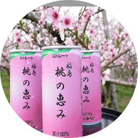 福島県産桃果 100%使用 桃の恵み