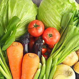 福島県産 7種類の野菜セット