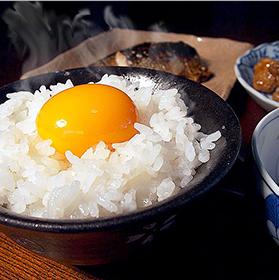 福島県中通り産コシヒカリ 白米 10kg
