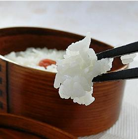 こしひかり10kg 送料無料 29年産 福島県 会津産 コシヒカリ 米