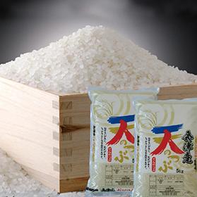 【新米】福島県会津産天のつぶ 白米