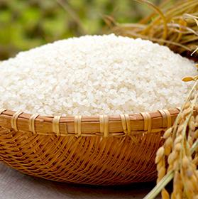 福島県産天のつぶ 玄米