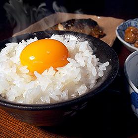 福島県中通り産コシヒカリ