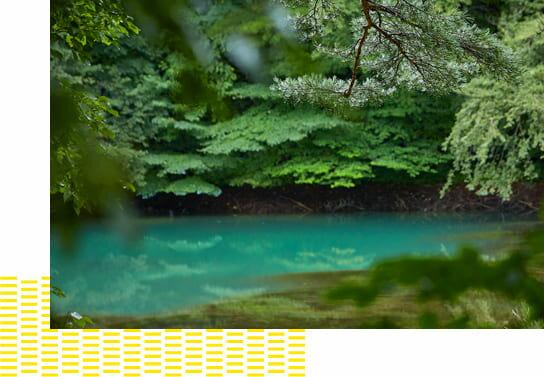 変化に富んだ水面の美しい色彩が大きな魅力