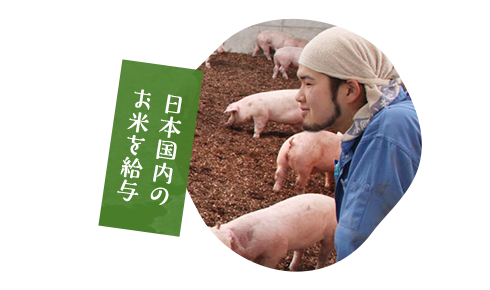 日本国内のお米を給与