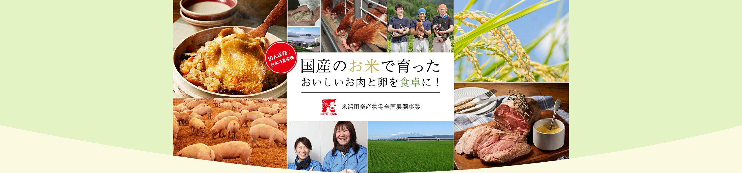 田んぼ発!日本の国産物。国産のお米で育ったおいしいお肉と卵を食卓に!米活用畜産物等全国展開事業
