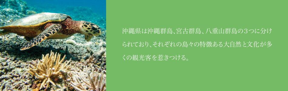 沖縄県は沖縄群島、宮古群島、八重山群島の3つに分けられており、それぞれの島々の特徴ある大自然と文化が多くの観光客を惹きつける。