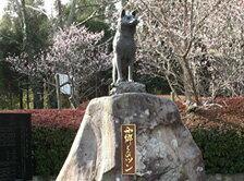 西郷隆盛の愛犬「ツン」