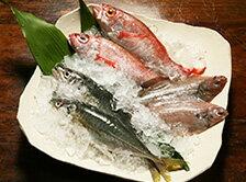 どんちっち三魚